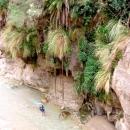 jordanie-jardins-suspendus-canyon-wadi-hasa