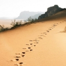 Desert-jordanie-traces-dans-le-sable_d-roberts