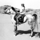 chevaux-bedouin-horse-sholah