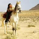nos-chevaux-cavaliere-et-sa-monture-bint-el-noor