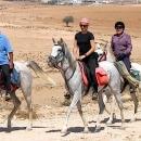 chevaux-groupe-de-cavaliers-au-depart-de-dana