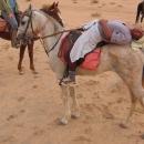 atallah-sabbah-premier-guide-equestre-bedouin